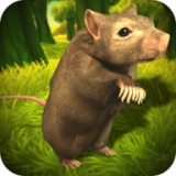 模拟老鼠 v1.1
