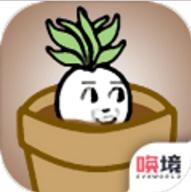 一个萝卜一个盆 v1.0.2